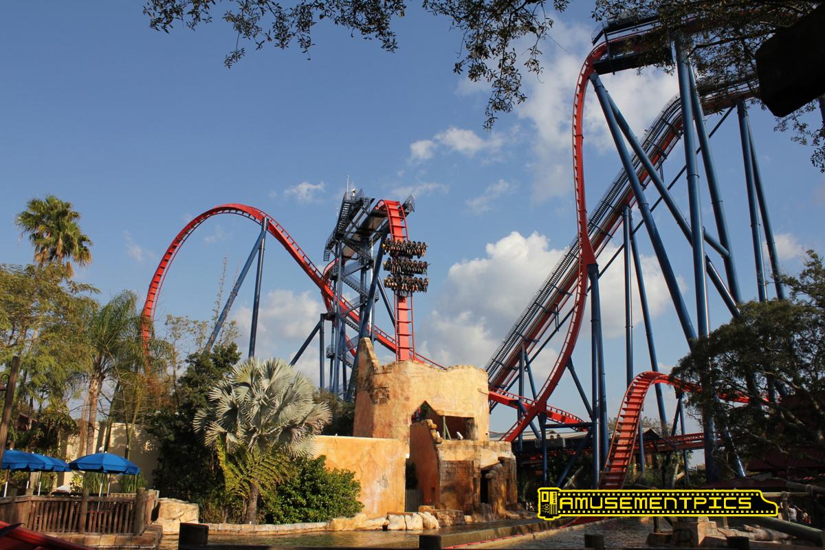 Image Result For Busch Gardens